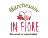 Marchesane in Fiore